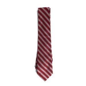 Express Red Pink Striped Silk Tie